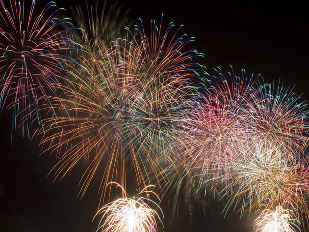 wimbledon park firework display 2019